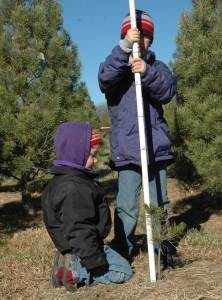 Christmas Tree Measuring Pole